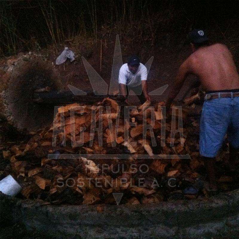 ISA_Estado-Michoacan-09