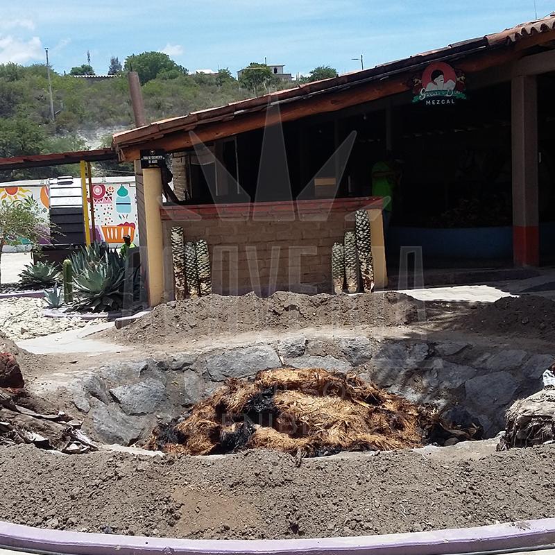 ISA_Estado-Oaxaca-01