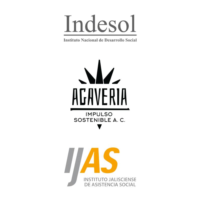 Agaveria_indesol-ijas_800x800
